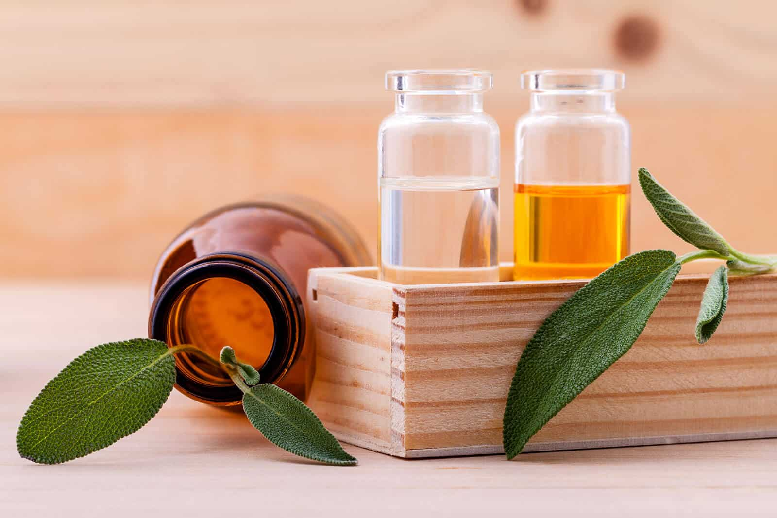 How to Choose Your Essential Oil Carrying Case