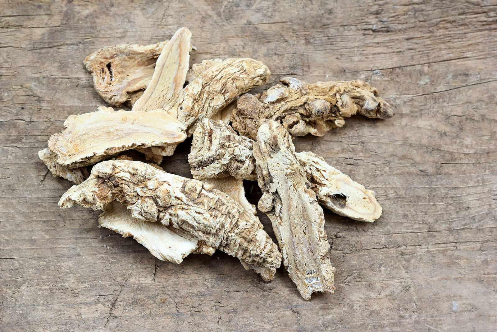 wellnessaromas-aromatherapy-essential-oil_angelica-benefits-uses