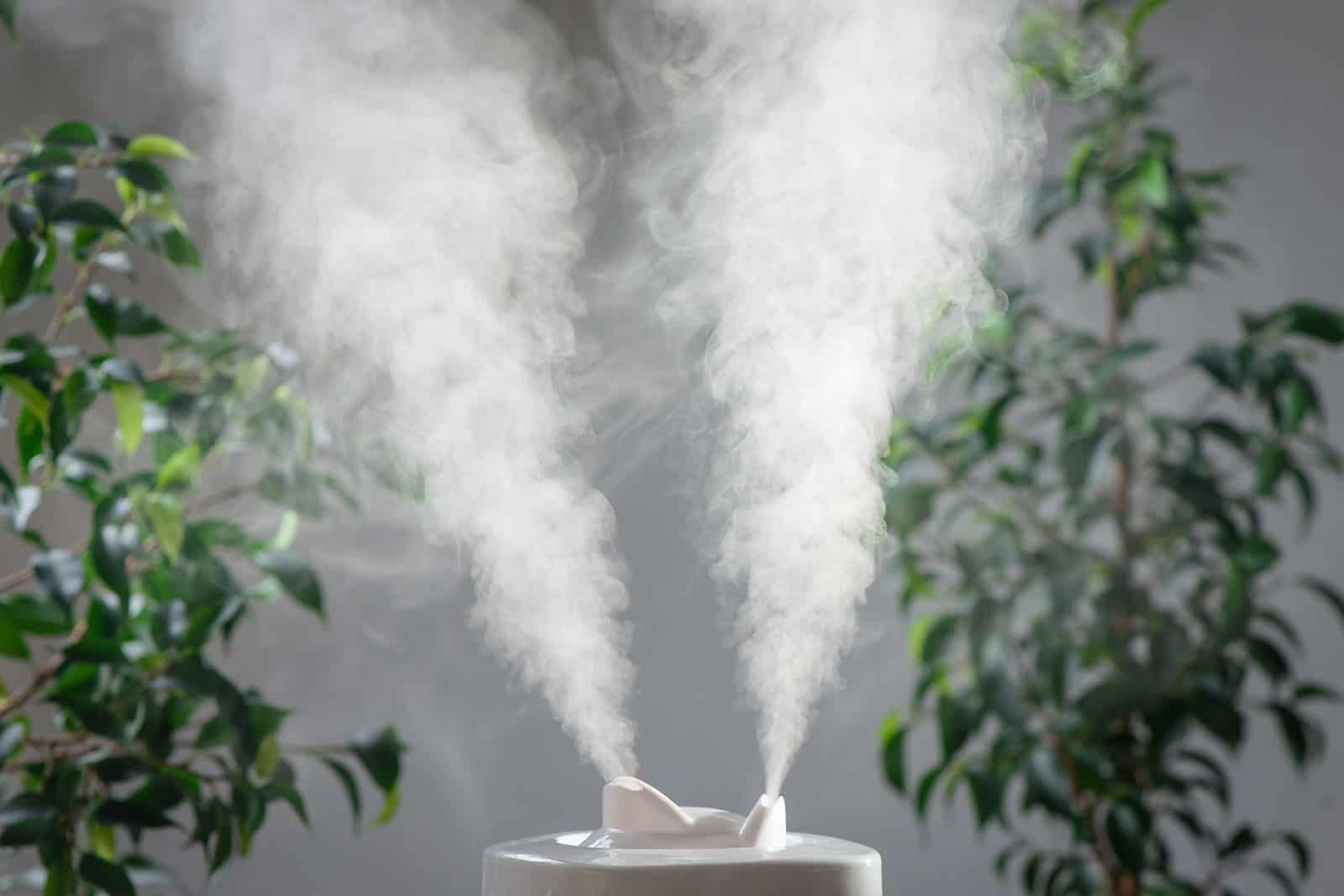 wellnessaromas-aromatherapy_essential-oil_best-aromatherapy-humidifier