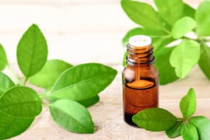 Petitgrain Essential Oil Benefits and Uses